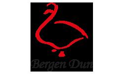 Bergen Dun - Logo